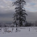 photo2008-khs-Park-Xmas-snow-12-22-04271
