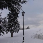 photo2008-khs-Park-Xmas-snow-12-22-04274