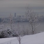 photo2008-khs-Park-Xmas-snow-12-22-04281